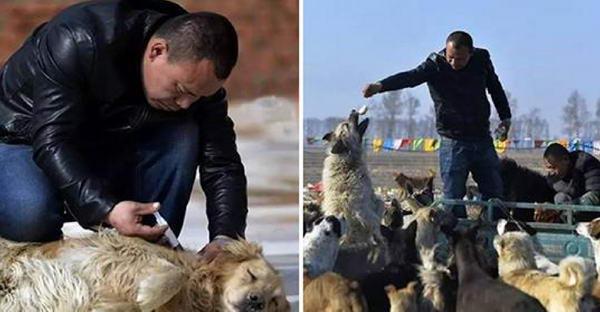 เศรษฐีสลัดภาพที่เจอในโรงเชือดไม่ได้ เขาจึงใช้เงินทั้งหมดเพื่อช่วยสุนัขไร้บ้าน