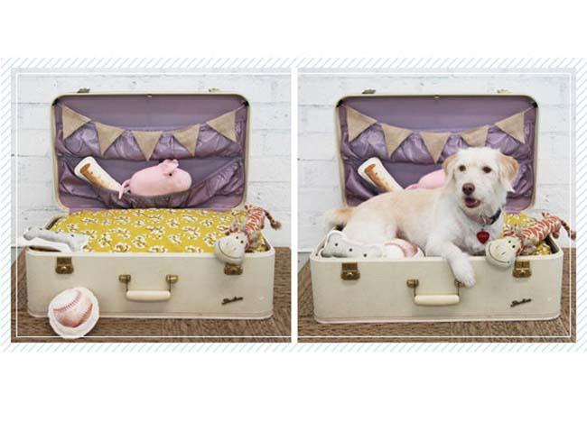54f5fa52d51b7_-_dog-bed-suitcase-diy-lgn