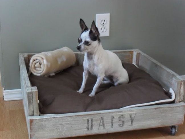 54f5fa56de1b9_-_crate-bed-pet-diy-lgn