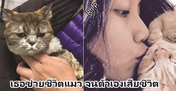 หญิงสาวสละชีวิตเพื่อช่วยแมวของเธอจากบ้านที่ถูกไฟไหม้