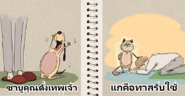 ทั้งๆที่เป็นสัตว์เลี้ยงเหมือนกัน แต่หมา-แมวกลับแตกต่างเหมือนมาจากคนละโลก
