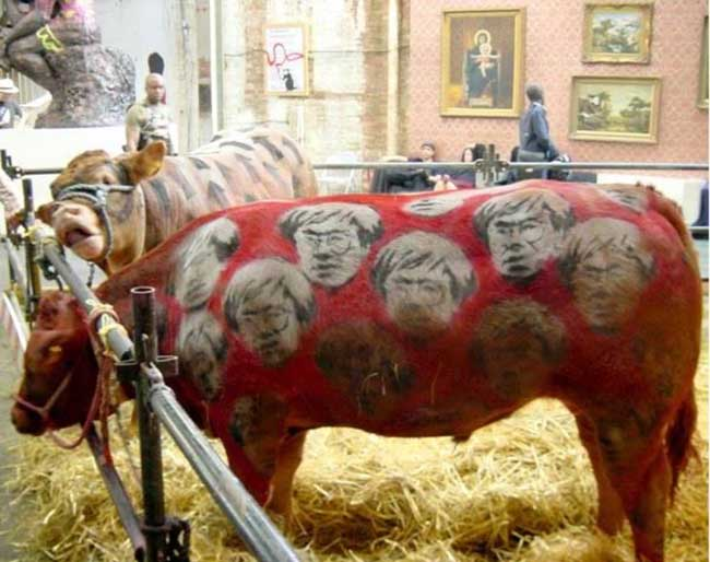 a99083_animal-canvas_8-cows2-1