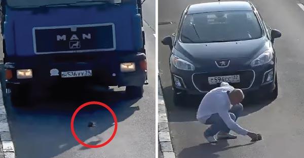ลูกแมวร่วงจากรถกลางถนนหวิดโดนรถทับ ก่อนมีชายใจดีจอดรถขวางทางช่วยไว้ทัน