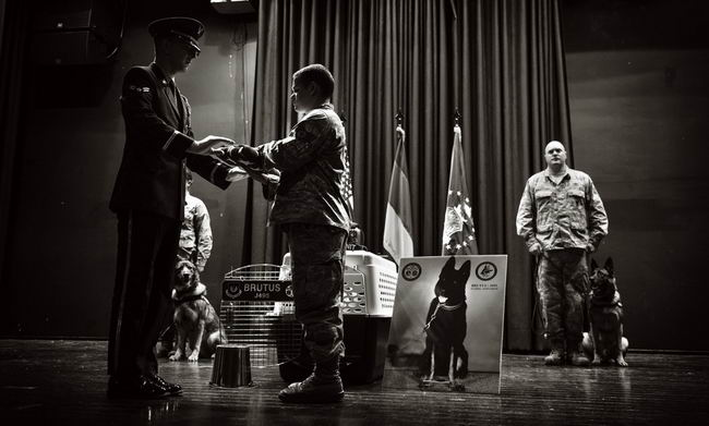 86th SFS remembers MWD
