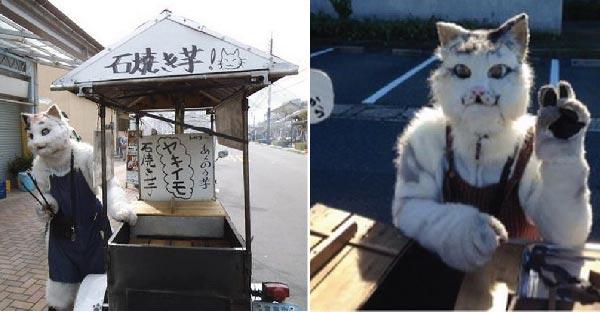 พ่อค้าชาวญี่ปุ่นใส่ชุดแมวขายมันเผา สร้างความแตกต่างและโดดเด่นจนชาวบ้านชื่นชอบกันสุดๆ