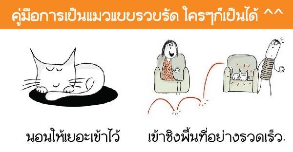 """หากคุณอยากเป็นแมวจะต้องทำยังไงบ้าง ลองอ่าน """"คู่มือการเป็นแมว"""" นี้ดูสิ"""