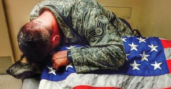 เรื่องราวของนายทหารที่ร้องไห้อย่างหนัก ในวันที่สูญเสียสุนัขที่รักที่สุด อย่างไม่มีวันกลับมา