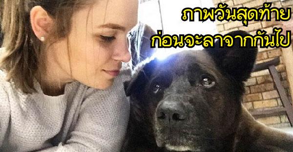 หญิงสาวสุดจะรั้งสุนัขสุดรักที่ป่วยมานาน ก่อนโพสต์ภาพวันสุดท้ายและส่งมันขึ้นสวรรค์ด้วยความเจ็บปวด
