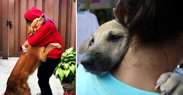24 ภาพสุนัขกอดมนุษย์ที่ดูแล้วอบอุ่นหัวใจมากที่สุด เพราะมันคือเพื่อนแท้ของพวกเรา