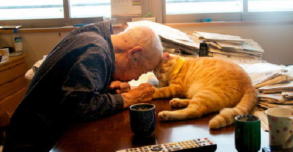 แมวเพื่อนรัก!! ได้เปลี่ยนชีวิตที่หมดหวังของคุณตาวัย 94 ให้กลับมามีชีวิตชีวาอีกครั้ง