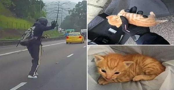 ไบเกอร์หนุ่มจอดรถกลางถนน เพื่อช่วยมิ้วน้อยที่กำลังตกอยู่ในอันตราย
