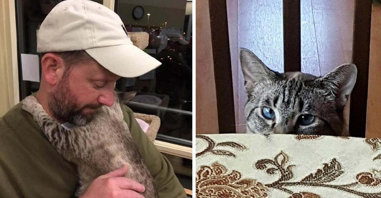 ชวยใจดีช่วยเยียวยาจิตใจแมวขี้กลัวให้หายดี หลังใช้ชีวิตหลบๆซ่อนๆมาตลอดชีวิต