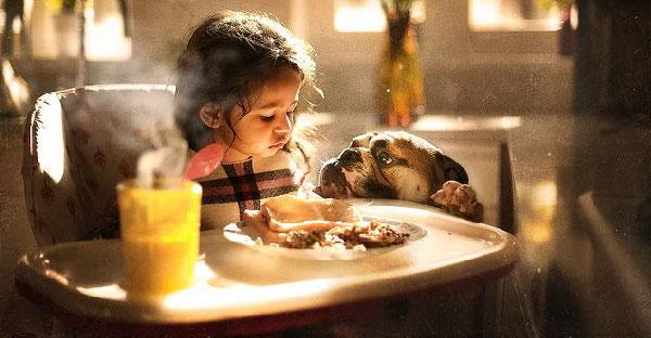 กว่าจะได้ภาพสวยๆของลูกสาวกับสุนัขชุดนี้ เกือบทำให้เธอและสามีต้องหย่าร้างกันเลยทีเดียว