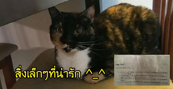 เจ้าของแมวทิ้งโน้ตให้เพื่อนเลี้ยงแมวแทน เป็นสิ่งเล็กๆที่น่ารักจนเป็นกระแสในโลกออนไลน์  (☆w☆)