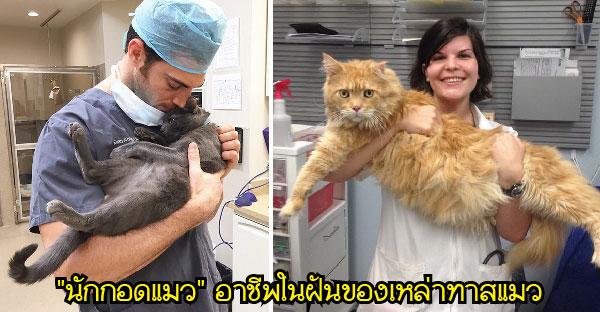 """คลีนิคแมวเปิดรับอาชีพ """"นักกอดแมว"""" นี่มันอาชีพในฝันของเหล่าทาสแมวชัดๆ!!"""