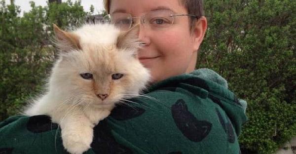 แมวแก่ไร้บ้านเพราะเจ้าของเก่าเสียชีวิต โชคดีถูกคนรับไปเลี้ยงในช่วงบั้นปลายชีวิต