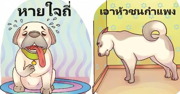 15 สัญญาณป่วยของสุนัขและแมว ที่ควรรีบพาไปหาสัตวแพทย์ทันที