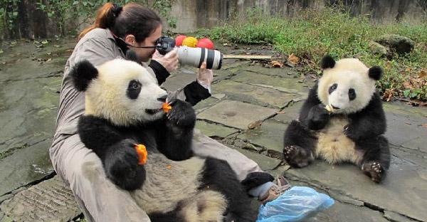 """ช่างภาพสาวเผย """"เบื้องหลัง"""" การถ่ายภาพสัตว์โลกที่ไม่ธรรมดา กับประสบการณ์แสนวิเศษ"""
