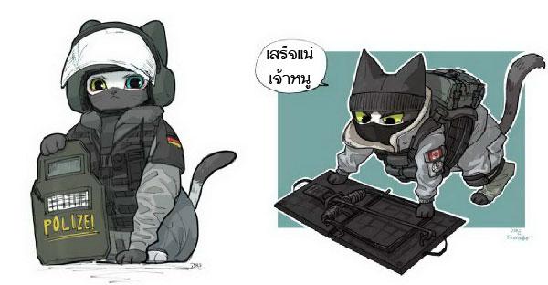 ถ้าแมวกลายเป็นหน่วยสวาทจะโคตรเท่มาดเข้ม!!