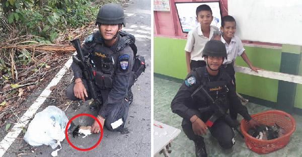 ทหารไทยใจดีช่วยลูกแมวจรจัดรอดตายจากข้างถนน พร้อมหาแม่นมชั่วคราวดูแล