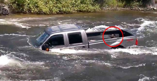 สุนัขติดอยู่ท้ายกระบะที่พลัดตกแม่น้ำที่เชี่ยวกราก โชคดีทีมกู้ภัยช่วยไว้ได้ก่อนรถจะจมหายไป!!