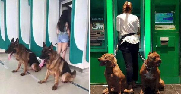 13 ภาพที่ชาวเนตยกนิ้วให้ ว่าคือการกด ATM ที่ปลอดภัยที่สุด