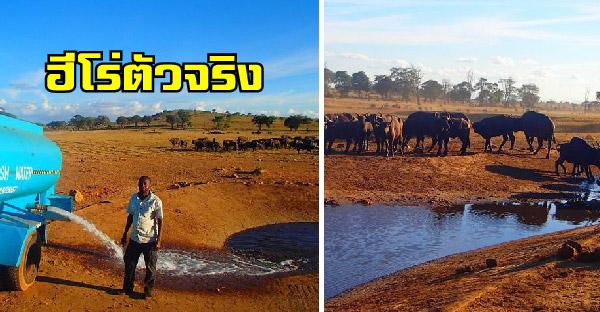 หนุ่มเกษตรกรขับรถวันละหลายชั่วโมง เพื่อเอาน้ำไปให้สัตว์ป่าอยู่รอดจากภัยแล้งได้