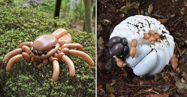 สัตว์ที่มีรูปร่างดูแปลกประหลาดเหล่านี้ ถูกสร้างขึ้นจากลูกโป่งล้วนๆ