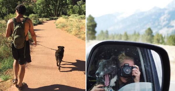 คู่รักช่วยเหลือสุนัขไร้บ้านในปั๊มน้ำมัน และพาออกผจญภัยขึ้นเขาลงห้วยไปด้วยกันทุกที่