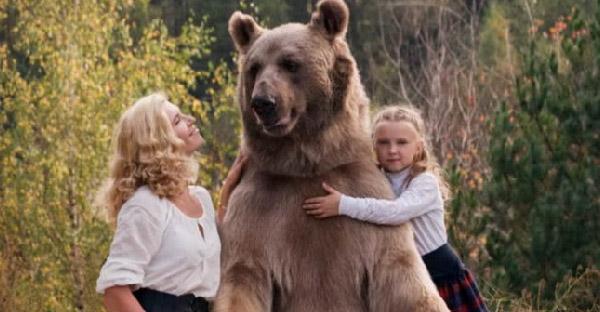 ครอบครัวรัสเซียเลี้ยงหมีสีน้ำตาลตัวเบิ้ม และให้เป็นพี่เลี้ยงลูกสาวอีกด้วย