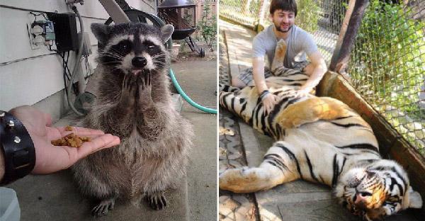 23 ภาพความฟินเฟ้อของสัตว์โลก ช่างเฮฮาปาจิงโกะจริงๆ