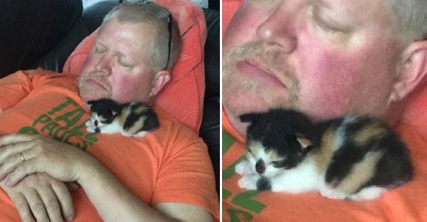 คุณพ่อเกลียดลูกแมวจนไม่อยากจะแตะ แต่ผ่านไป 2 สัปดาห์กลายเป็นอย่างนี้ไปซะแล้ว