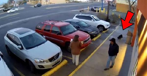 กล้องวงจรปิดจับภาพคนทิ้งสุนัขไว้ข้างถนน แถมทิ้งข้อความสุดสะเทือนใจไว้ด้วย