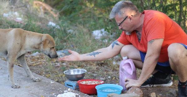 รู้จัก Micheal หนุ่มสก๊อตที่ช่วยหมาจรในไทยโดยไม่หวังผลตอบแทน นานกว่า 6 ปีแล้ว!!