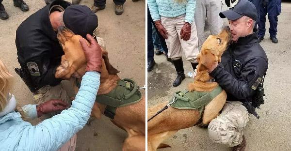 กู้ภัยและชาวบ้านสามร้อยชีวิต ออกตามหาสุนัขที่ตกหุบเขา นาน 36 ชั่วโมงจนเจอ!!