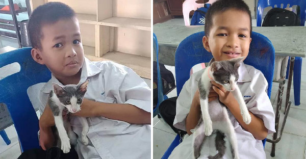 เด็กน้อยพาแมวมาเรียนหนังสือ พักเที่ยงต้องฝากไว้กับครู น้ำตาคลอกับคำพูดน่ารักๆ ที่ฟังแล้วต้องยิ้มตาม