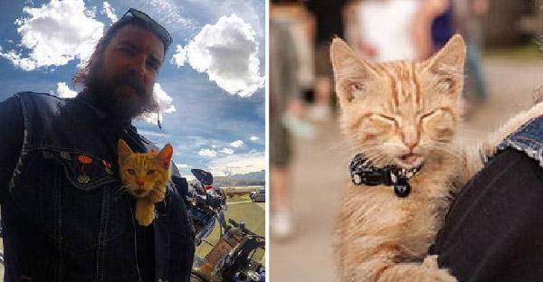 ไบค์เกอร์หน้าเข้มช่วยชีวิตแมวจรที่ได้รับบาดเจ็บ และพาซิ่งด้วยกันตลอดไป