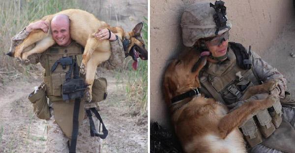 23 ภาพสุนัขกับทหารสุดซึ้ง ที่จะทำให้คุณน้ำตาซึมแล้วซึมอีก