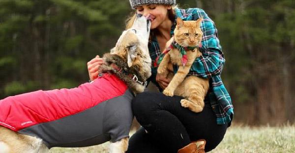 อดีตหมาไร้บ้านพาแมวจรจัดที่เคยขาหัก ออกผจญภัยโลกกว้างจนติดใจติดหนึบไปทุกที่