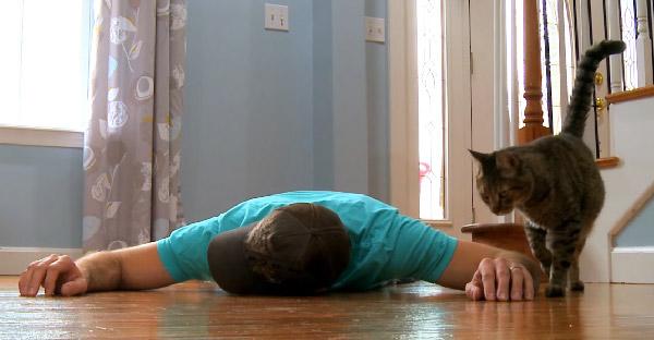 ถ้าเจ้าของแกล้งตายต่อหน้าแมวที่รัก มันจะมีปฏิกิริยายังไงบ้าง
