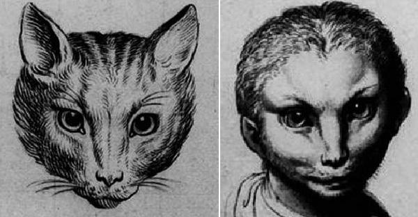ถ้ามนุษย์วิวัฒนาการมาจากสัตว์สายพันธุ์อื่นๆ จะหน้าตาเป็นยังไงกันบ้าง