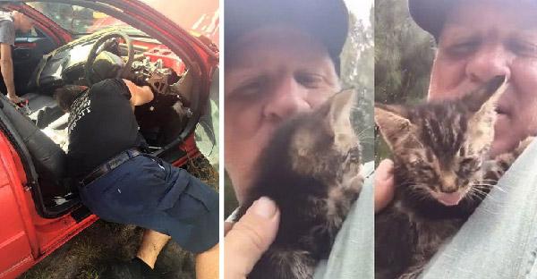 ลูกแมวร้องเสียงดังในห้องเครื่อง ภรรยาจึงขอร้องสามีรื้อรถสุดหวงเพื่อช่วยลูกแมว