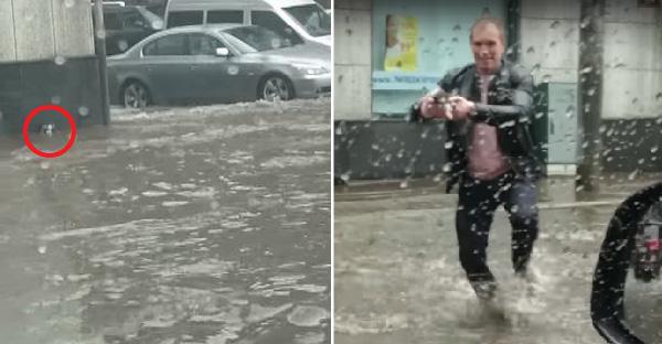 หนุ่มน้ำใจงามจอดรถริมฟุตบาท ช่วยลูกแมวข้างถนนที่ถูกน้ำท่วมเล่นงาน