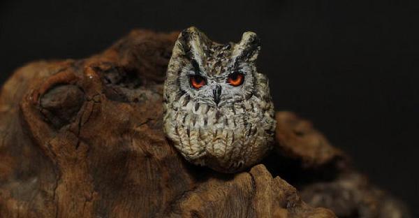ศิลปินสาววาดศิลปะบนก้อนหิน และสร้างสรรค์ให้กลายเป็นสัตว์ที่มีชีวิตขึ้นมา