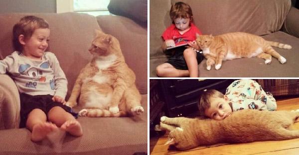 แมวส้มไร้คนเหลียวแล ได้เด็กน้อยช่วยชีวิตและกลายเป็นเพื่อนแท้คนแรกของกันและกัน