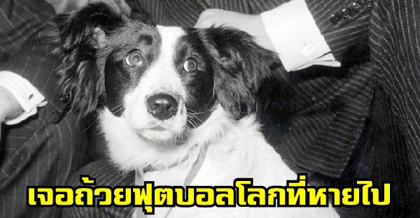 วีรกรรมสุดยอดสุนัขในอดีต ที่ถูกบันทึกไว้ในประวัติศาสตร์โลก