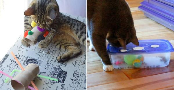 10 DIY ของเล่นแมวที่ทาสทำได้เองที่บ้าน แถมเซฟเงินในกระเป๋าแบบง่ายๆ ฟินๆ