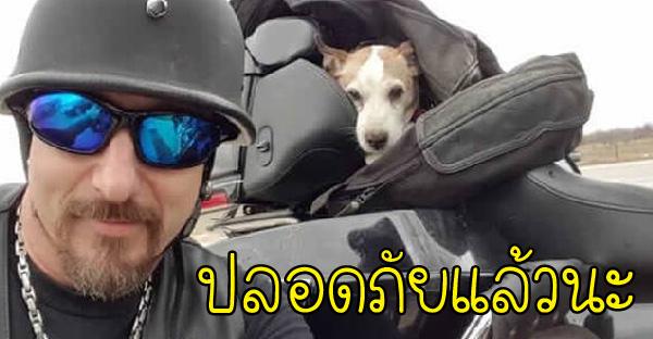 ลูกหมาถูกโยนออกนอกรถ โชคดีไบเกอร์อยู่ในเหตุการณ์และยังช่วยอุปถัมภ์เลี้ยงดูอย่างดี