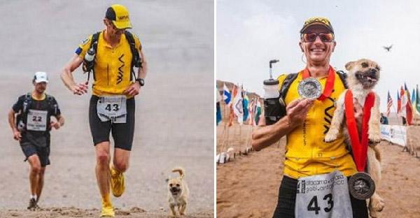 หมาน้อยวิ่งตามชายแปลกหน้าในการแข่งมาราธอน เขาไม่มีเงินพากลับบ้าน แต่สุดท้ายชาวเนตช่วยบริจาคให้