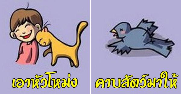 12 ภาษากายแมวฉบับเข้าใจง่าย ที่จะทำให้เข้าใจเจ้านายมากขึ้นเยอะ